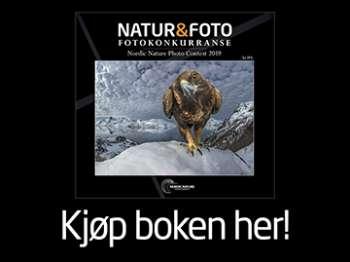 Natur og foto konkurranse
